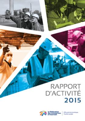 Couv Rapport d activité 2015 de la fédération des entreprises d insertion